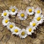 Como reconquistar um amor? Traga a pessoa amada de volta!