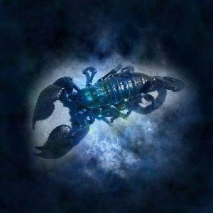signo de escorpião tem como símbolo o próprio escorpião